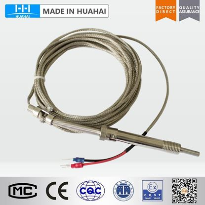 Picture of WRNT-01 compression spring fixed type thermocouple